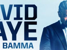 David Haye joins BAMMA